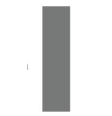 Logo Radetzky Villa